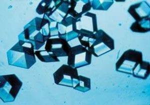 Cristales de Insulina