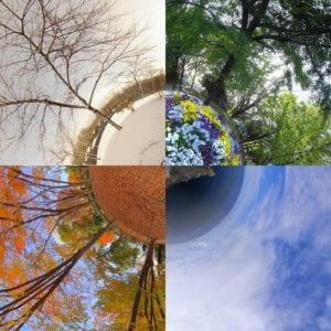 Cuatro estaciones. Imagen: Masakazu Matsumoto (CC BY 2.0 https://creativecommons.org/licenses/by/2.0/)