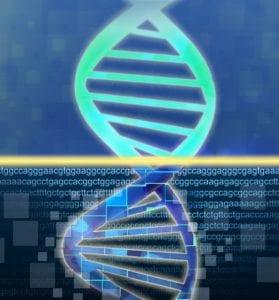 tumorogénesis. Imagen: Jonathan Bailey (National Human Genome Research Institute, http://www.genome.gov).