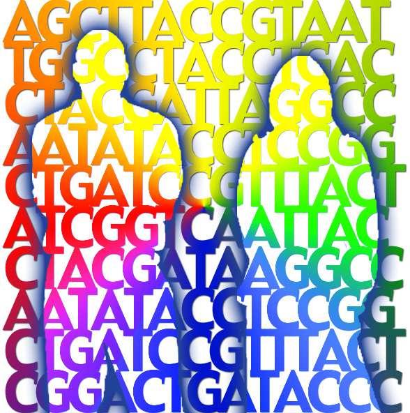 Imagen: Jade Ades (National Human Genome Research Institute, EEUU)