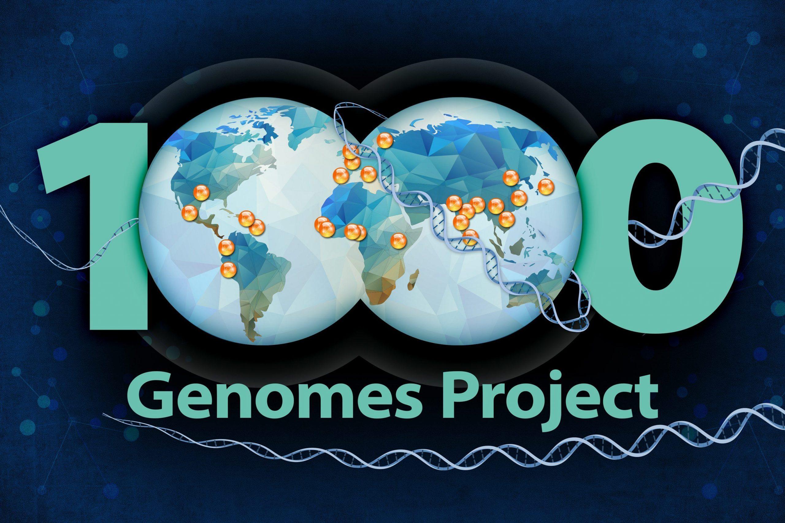 El proyecto 1.000 genomas proporciona el mayor catálogo de variación genómica humana hasta la fecha. Imagen: Ernesto del Aguila III, National Human Genome Research Institute, National Institute of Health (https://www.genome.gov).