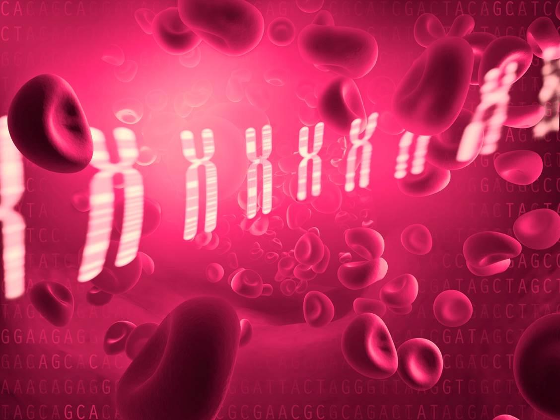 pruebas prenatales Imagen: Ernesto del Aguiila, (National Human Genome Research Institute, NIH, EE.UU. www.genome.gov).