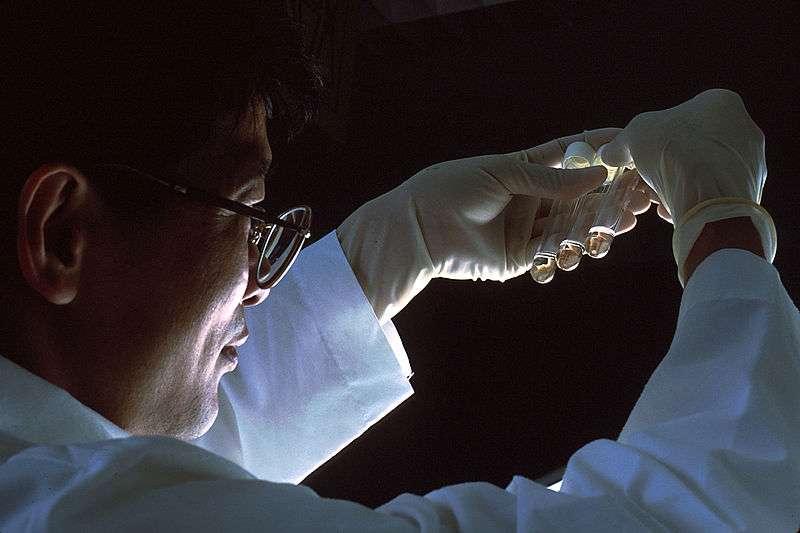 Cuando se toma una biopsia de un tumor, además de las células del cáncer, la muestra extraída contiene otros componentes. Imagen: John Crawford (Photographer)
