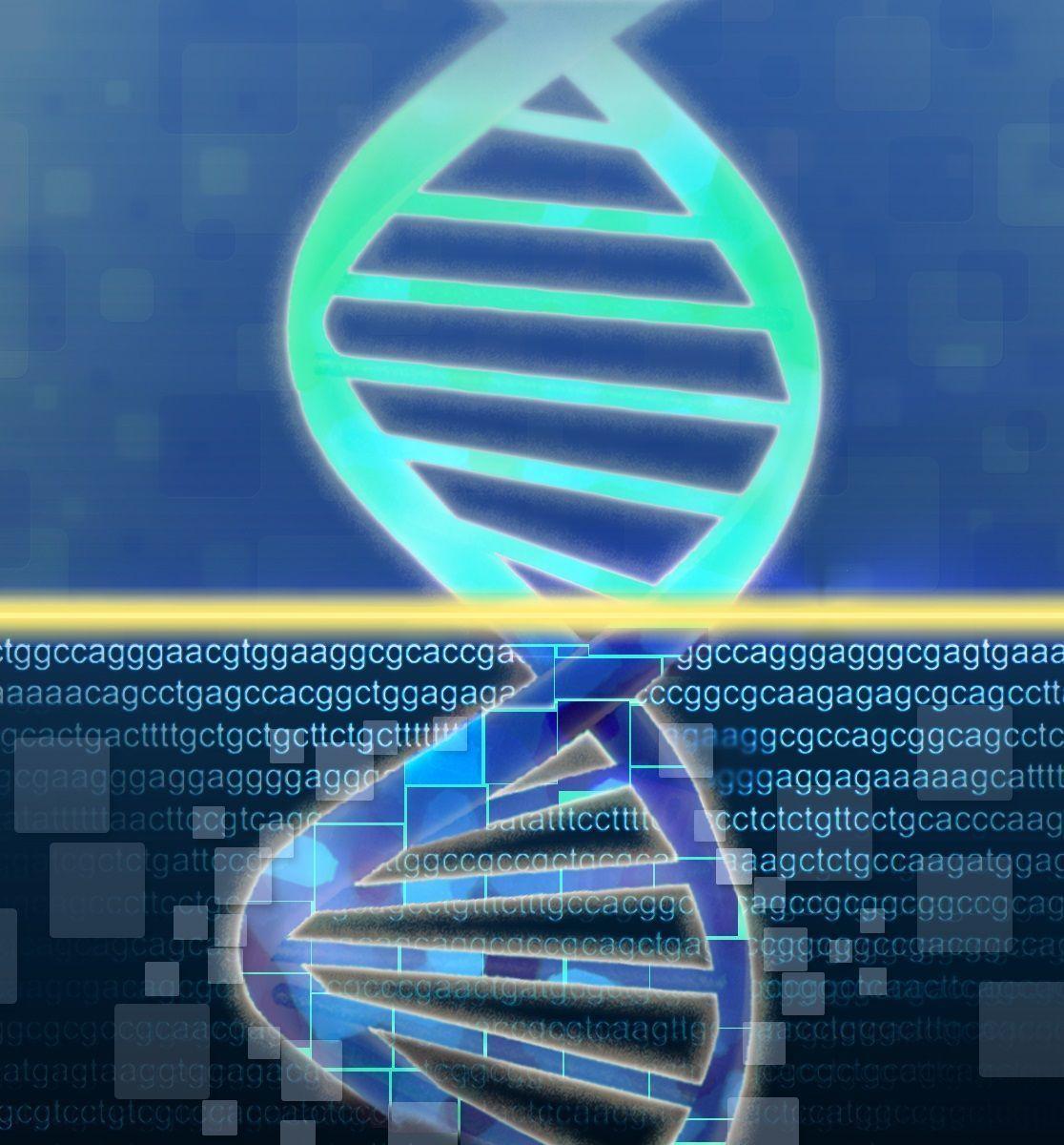 Los investigadores sugieren que en el futuro los análisis bioinformáticos con datos genómicos globales deberían ajustarse según la pureza tumoral. Imagen: Jonathan Bailey (National Human Genome Research Institute, http://www.genome.gov).