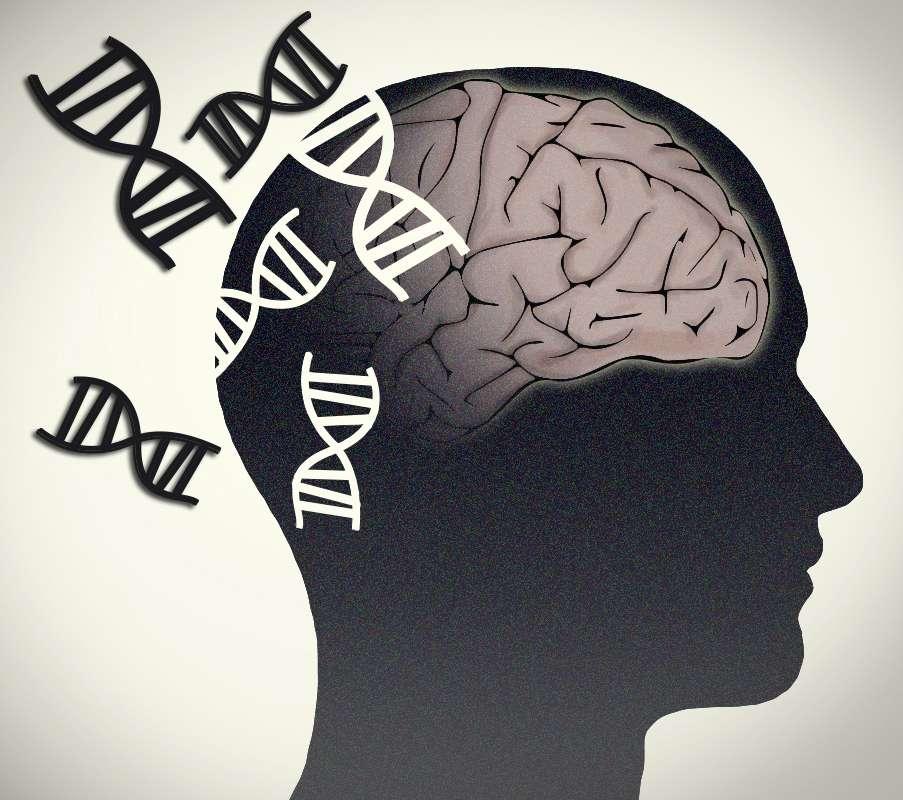 desorden bipolar. Imagen: Jonathan Bailey, NHGRI (National Human Genome Research Institute)