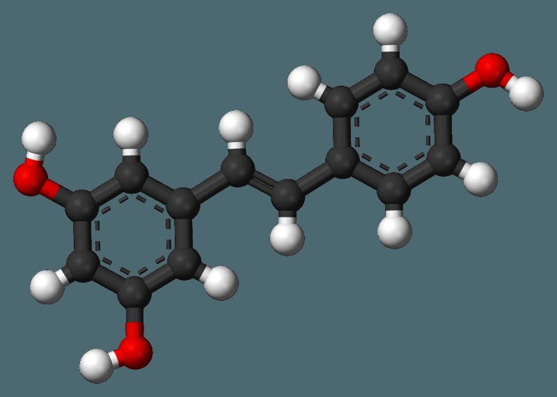 La reactivación de Sirt1 mediante el resveratrol prevenía la pérdida de memoria en los ratones obesos. Imagen: estructura molecular del resveratrol.