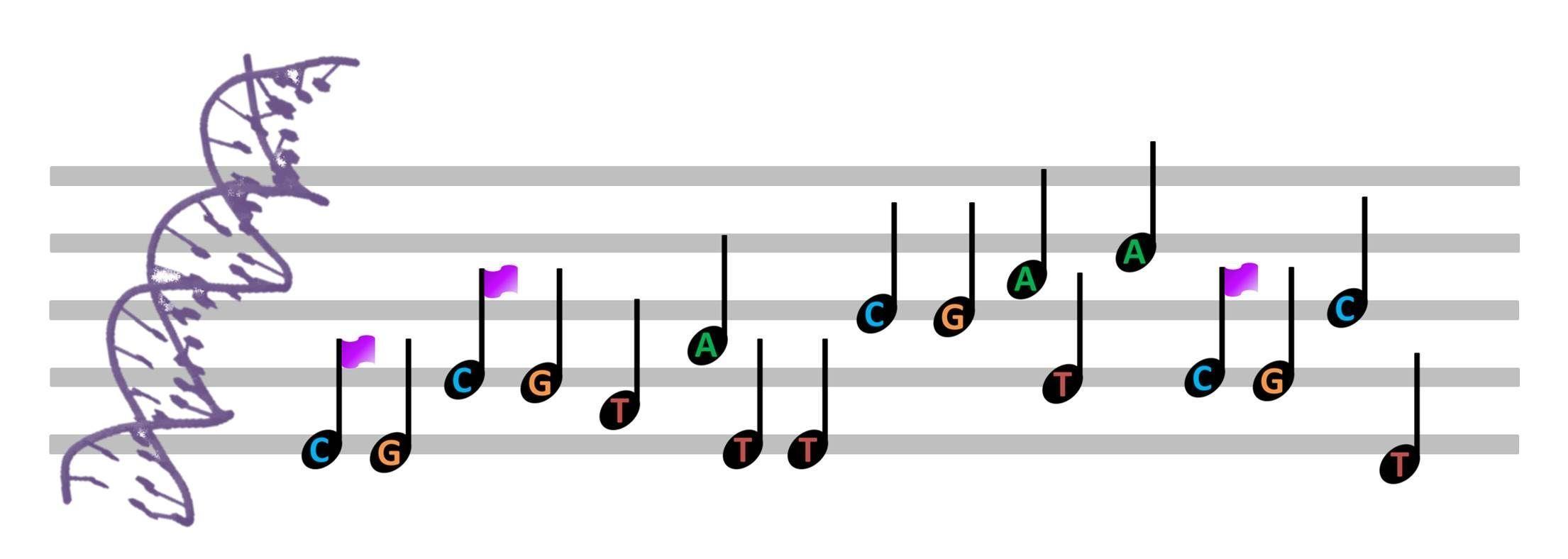 Los mecanismos epigenéticos son como las marcas que acompañan a las notas en una partitura.