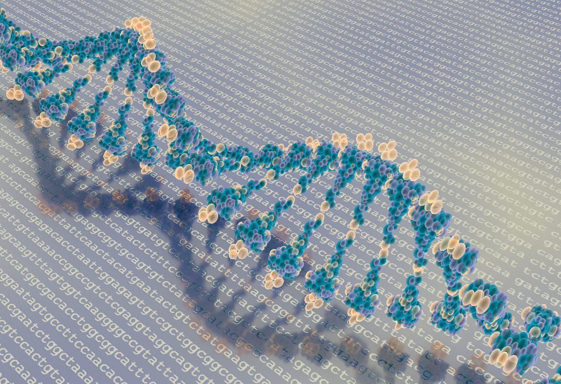 La secuencia de ADN constituye las instrucciones de nuestro organismo. El epigenoma permite interpretarlas. Imagen: Mehmet Pinarci.