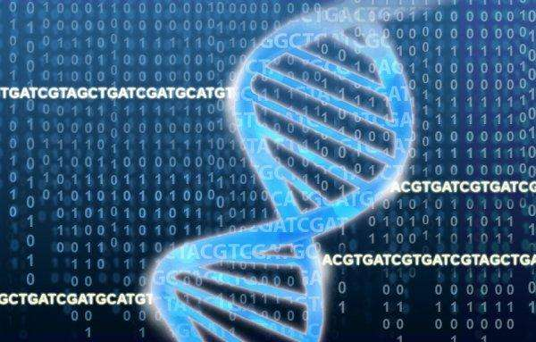 Imagen: National Human Genome Research Institute