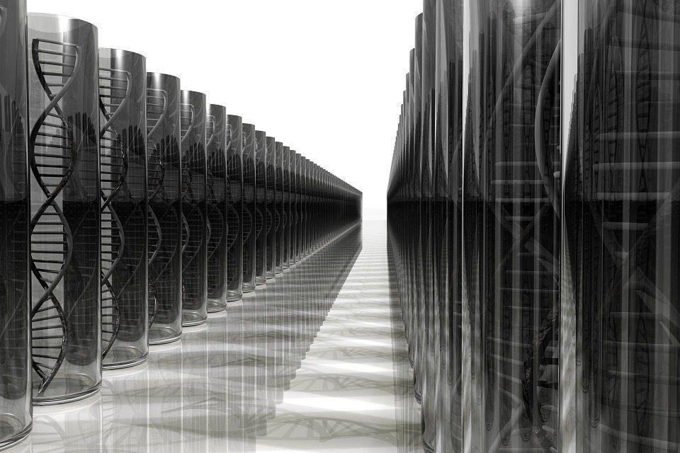 Investigadores de la Universidad de California San Diego han desarrollado un chip capaz de detectar las moléculas de ADN (o ARN) que contengan una mutación, mediante la hibridación a una sonda incrustada en grafeno. Imagen: Pixabay.