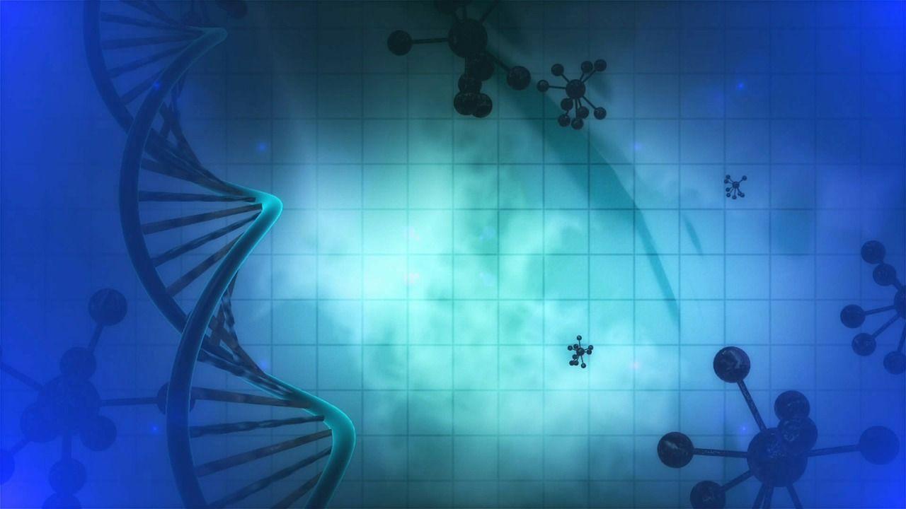 Un estudio internacional crea un extenso un catálogo de interacciones entre mutaciones presentes en los tumores de los pacientes de cáncer y fármacos utilizados en terapias oncológicas. Imagen: Pixabay.