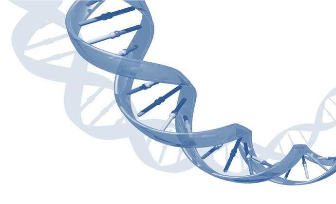 ADN. Imagen modificada de Imagen: Darryl Leja, National Human Genome Research Institute (http://www.genome.gov).