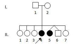 Figura 2. Árbol genealógico de la familia de la paciente del caso 2.
