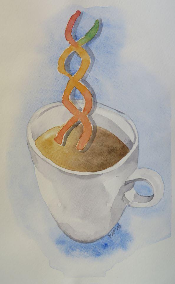 . El consumo moderado de café podría suprimir la inflamación sistémica causada por la activación del inflamasoma y contribuir así a la correlación observada entre el consumo de cafeína y la longevidad. Imagen cortesía de la Dra. Veronica La Padula.