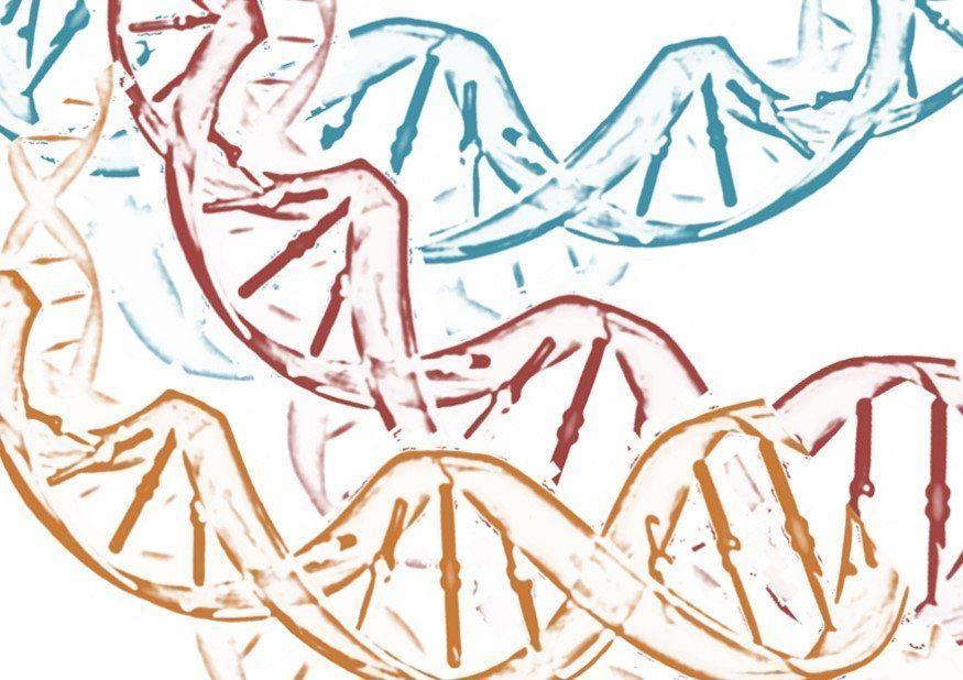 La evaluación de múltiples oncogenes de forma simultánea, en lugar de secuencial permitiría la optimización del material obtenido en biopsias pulmonares. Imagen: MedigenePress S.L.