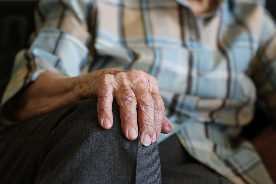 evolución y envejecimiento