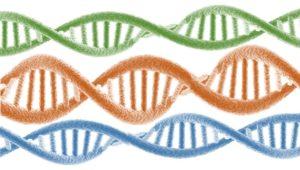 genómica