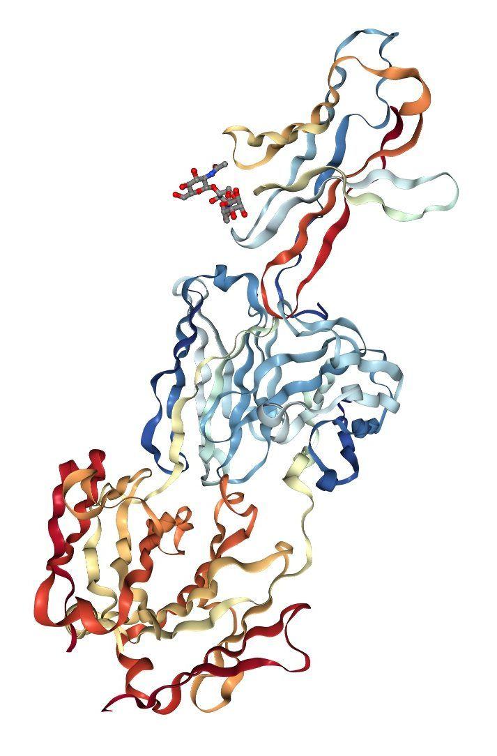 inhibidores PD1