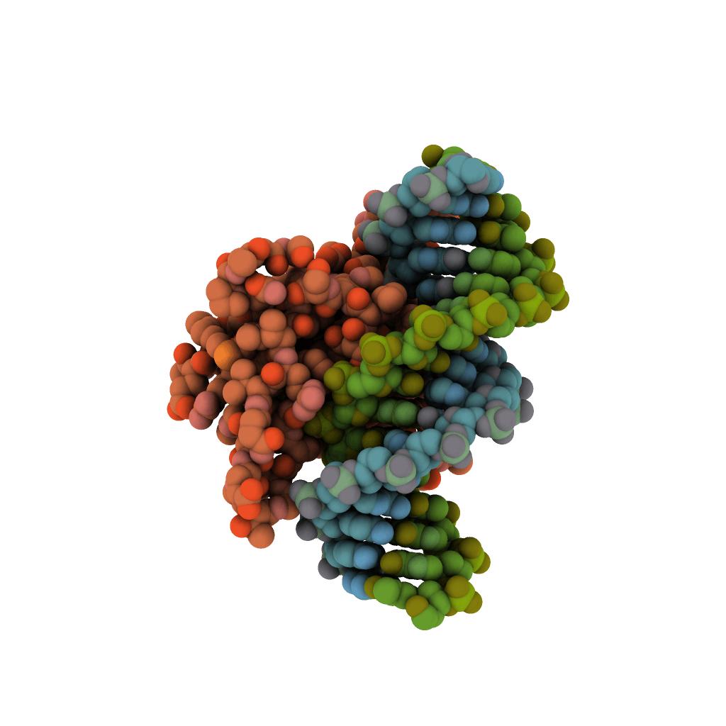 gen supresor de tumores
