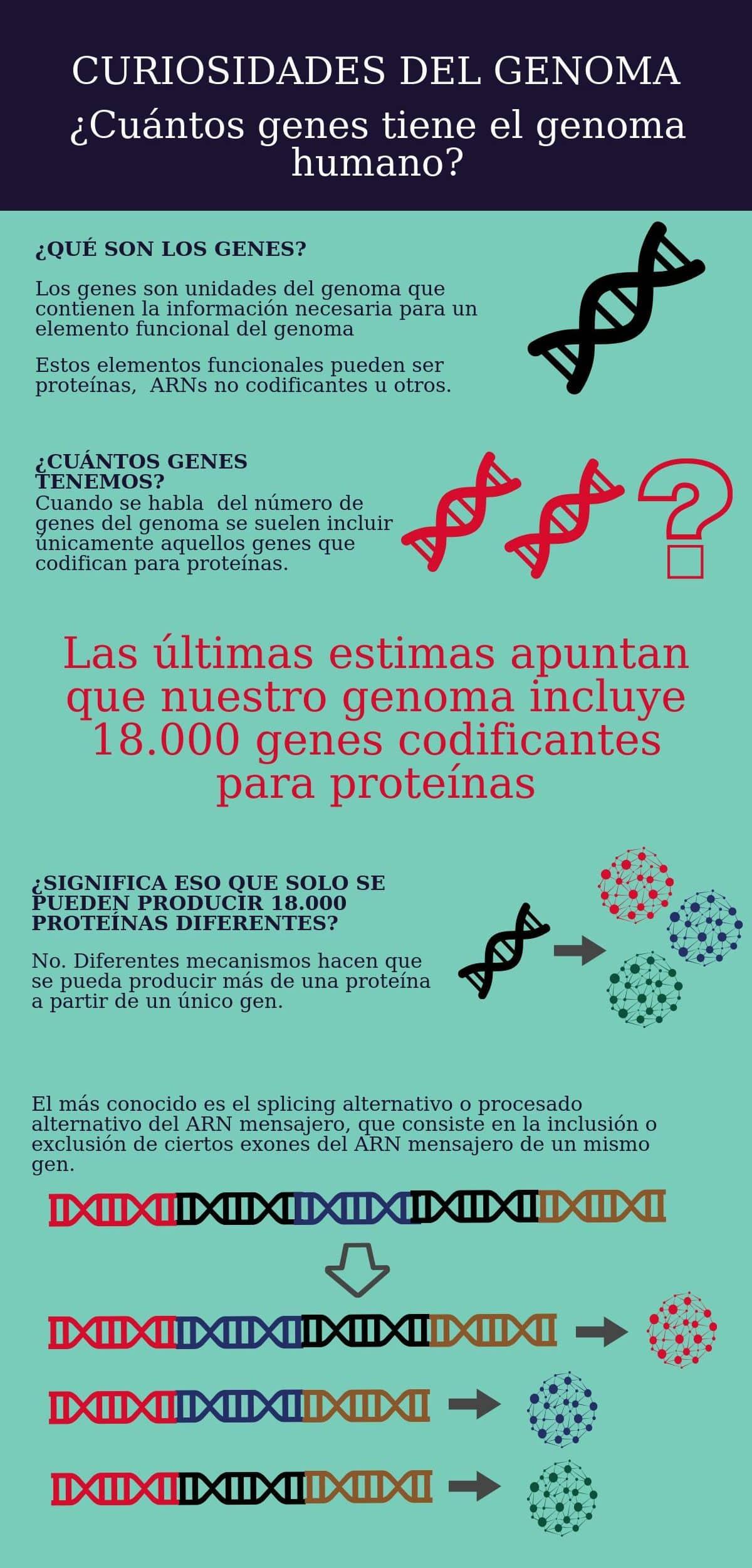 curiosidades del genoma