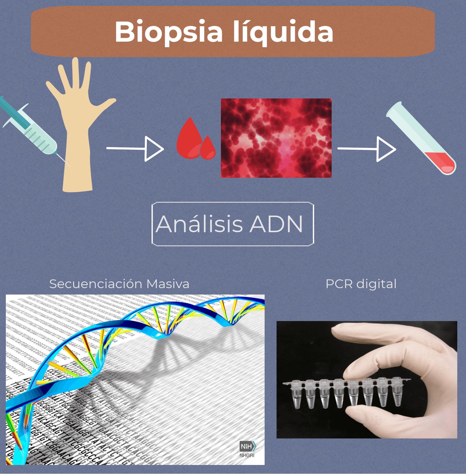biopsia líquida