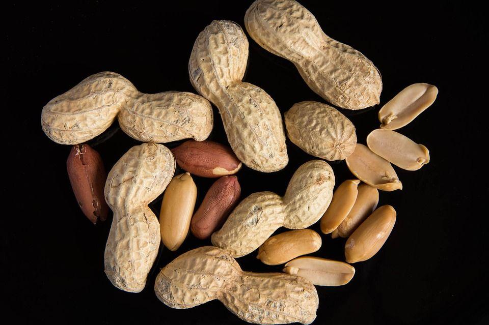 genética alergia cacahuetes