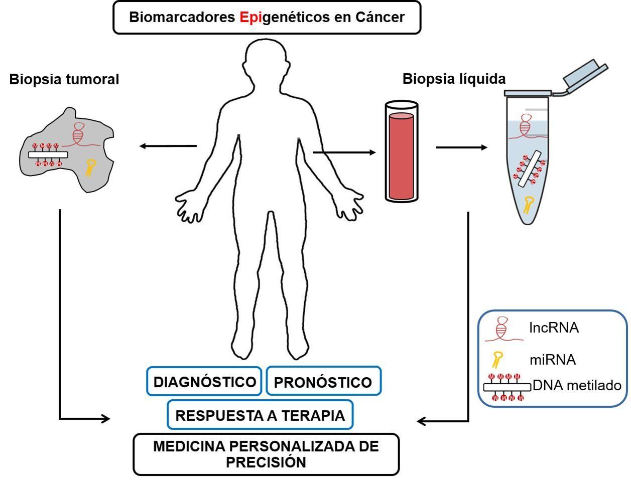 biomarcadores epigenéticos