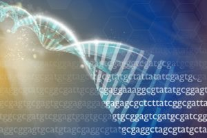 genética trastornos de la conducta alimentaria