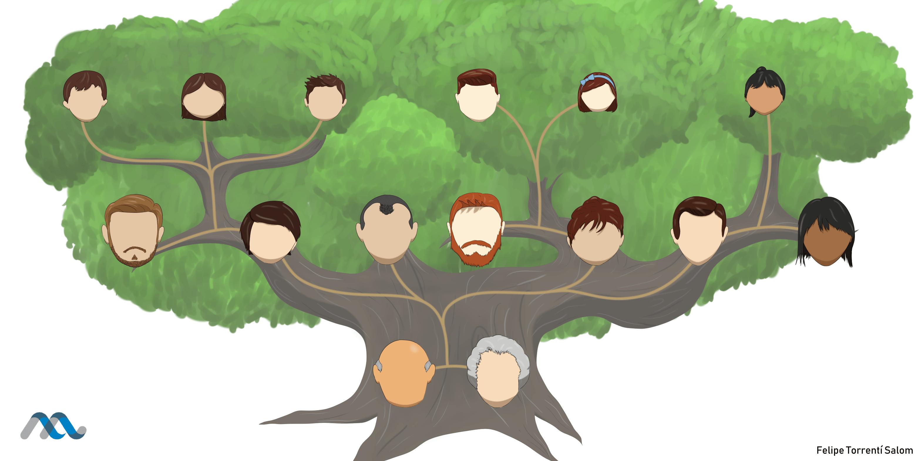 árboles Familiares Y Predicción De Riesgo De Enfermedades A Partir