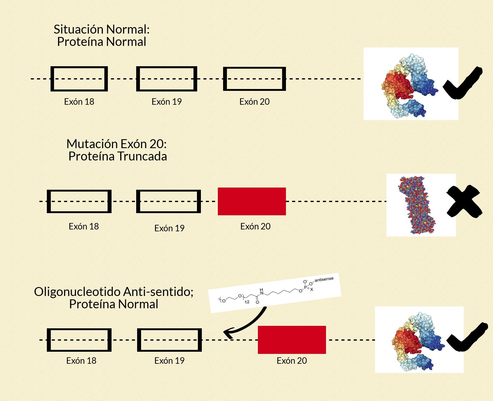 Disautonomía familiar