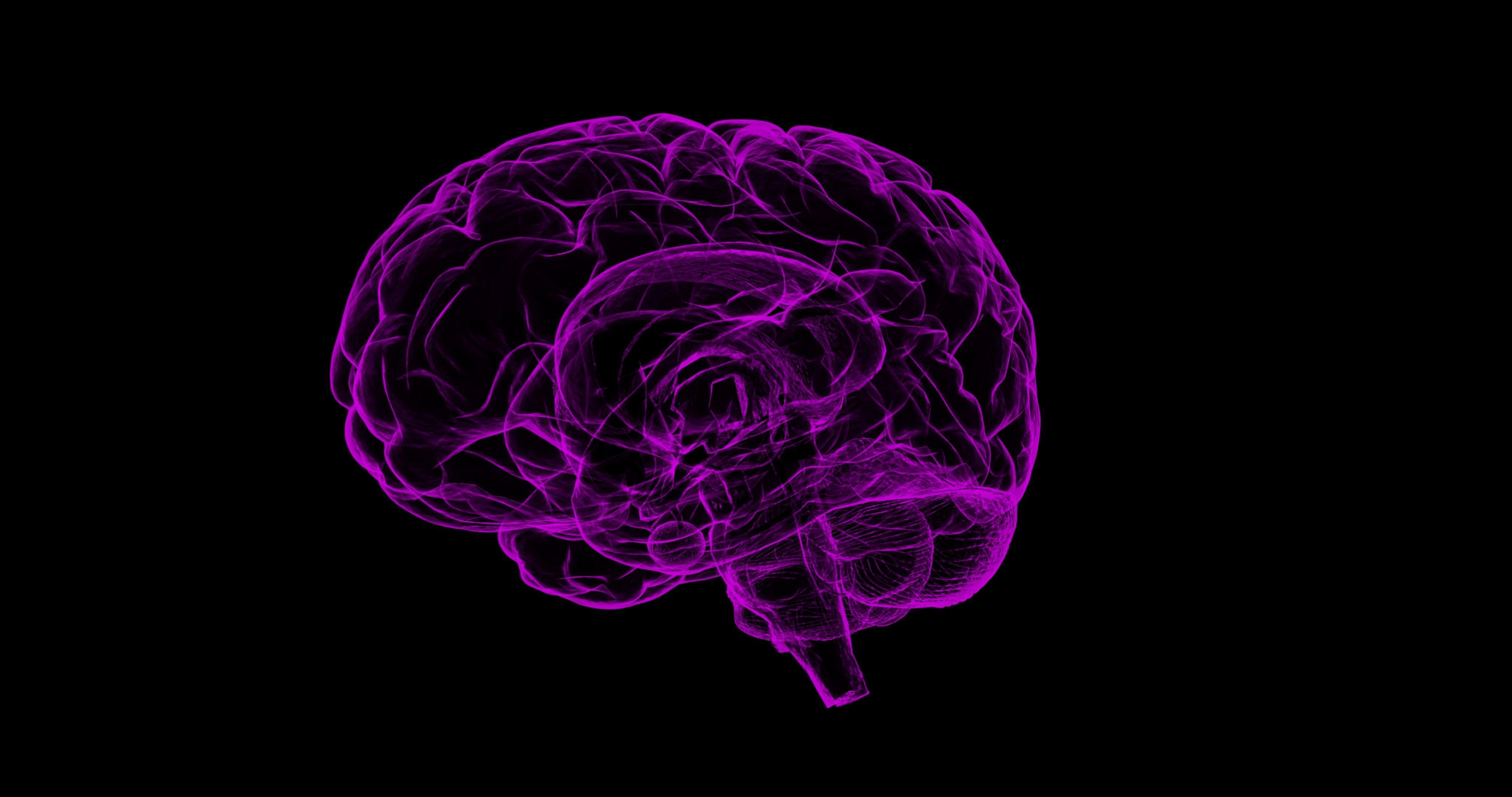 biomarcadores lesiones cerebrales