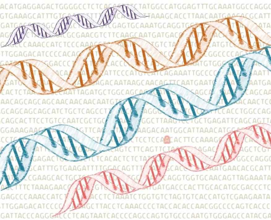 evolución clonal leucemia