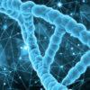 Experto Universitario en Genética Médica y Genómica (Presencial)