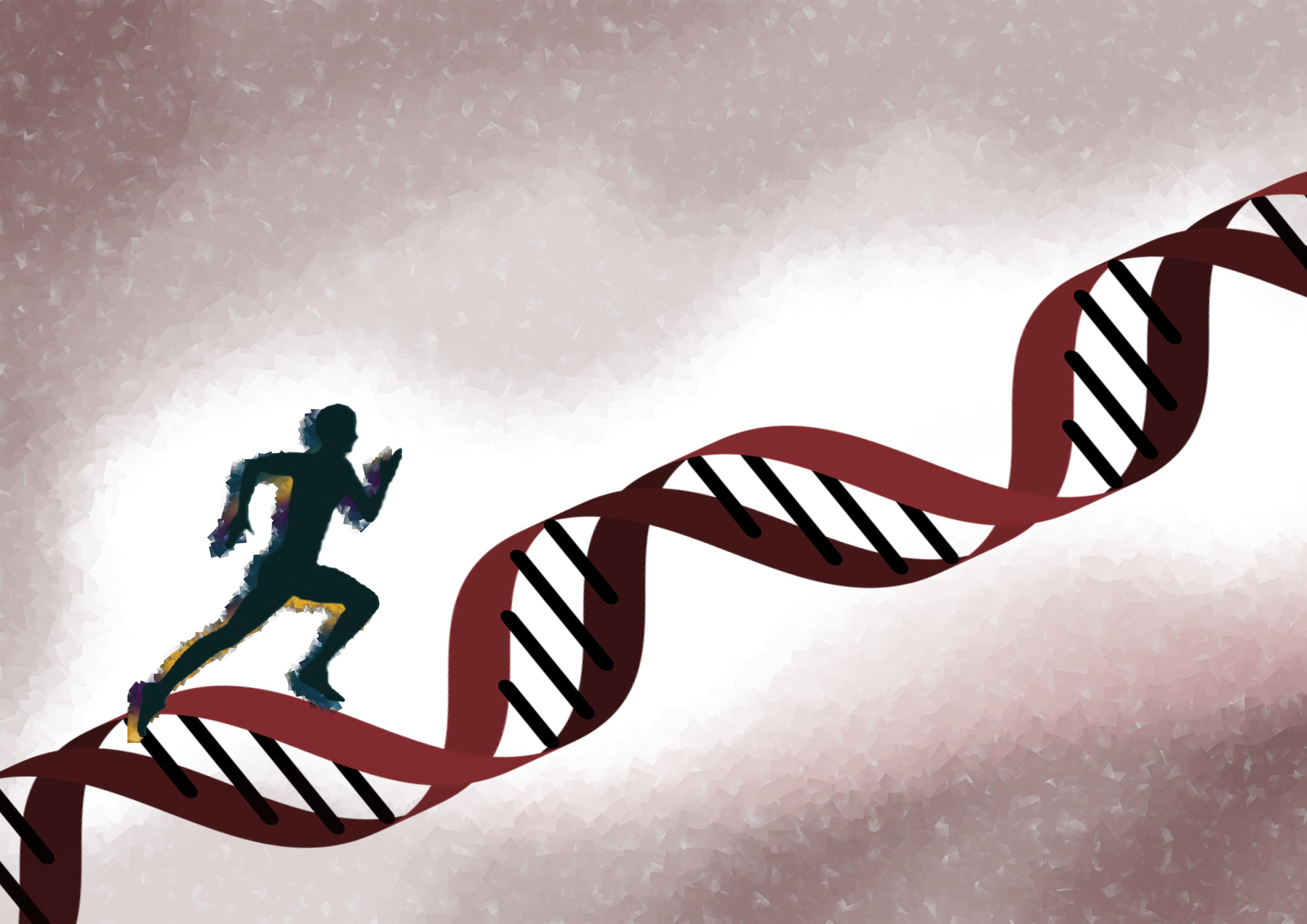 ARRIGE edición genoma