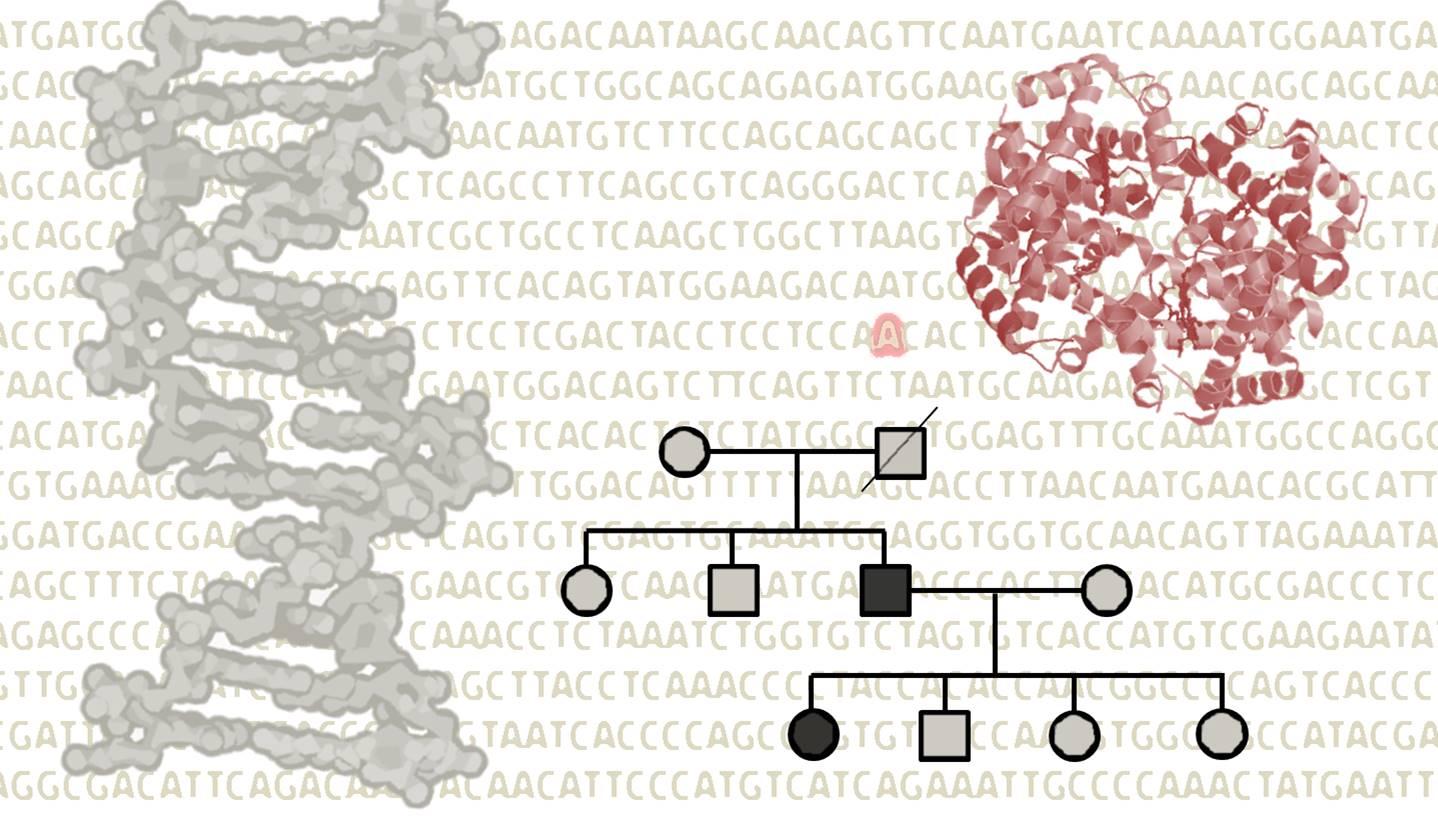 reanálisis resultados genómicos diagnóstico genético
