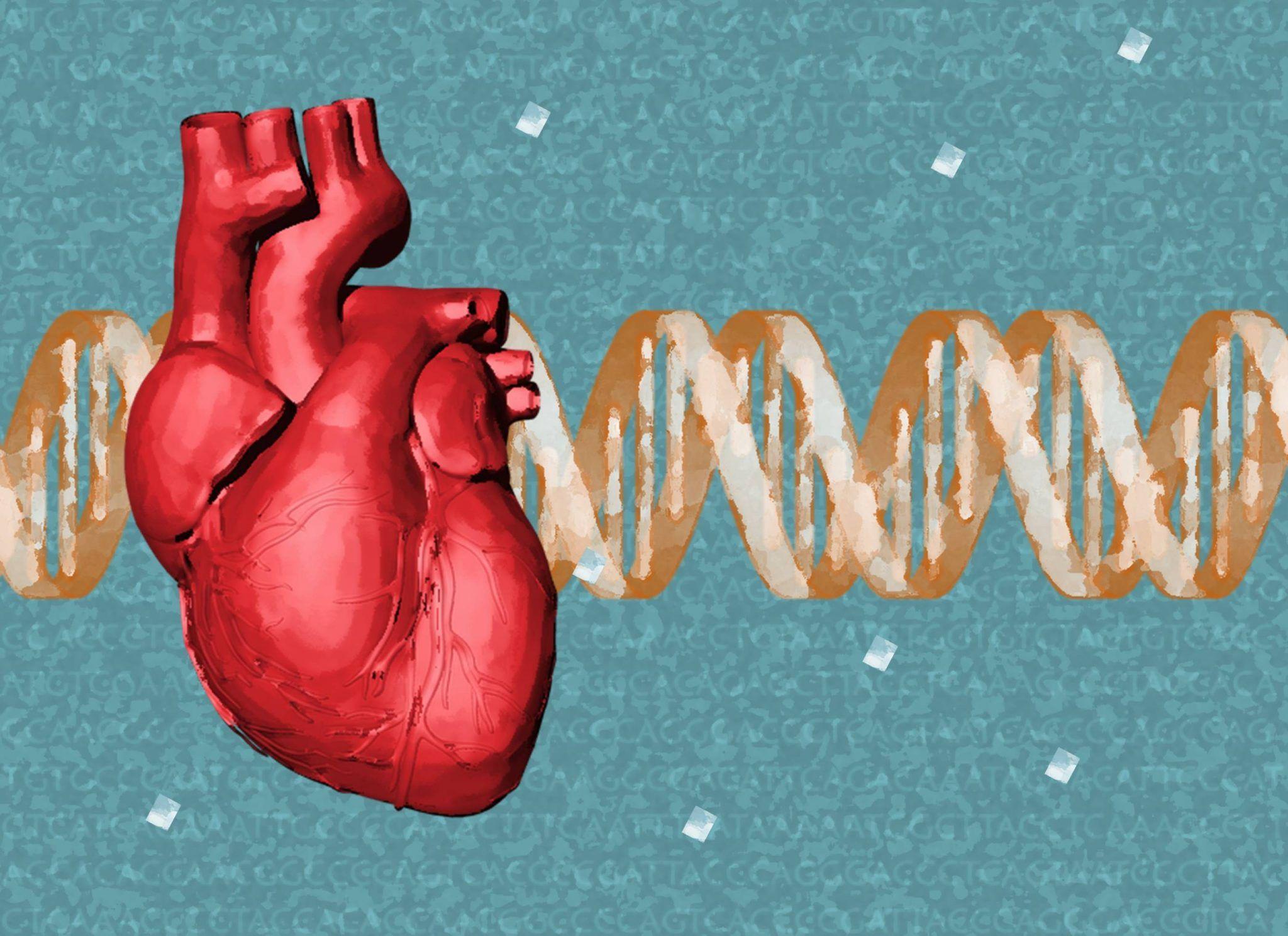 genética cardiovasculares