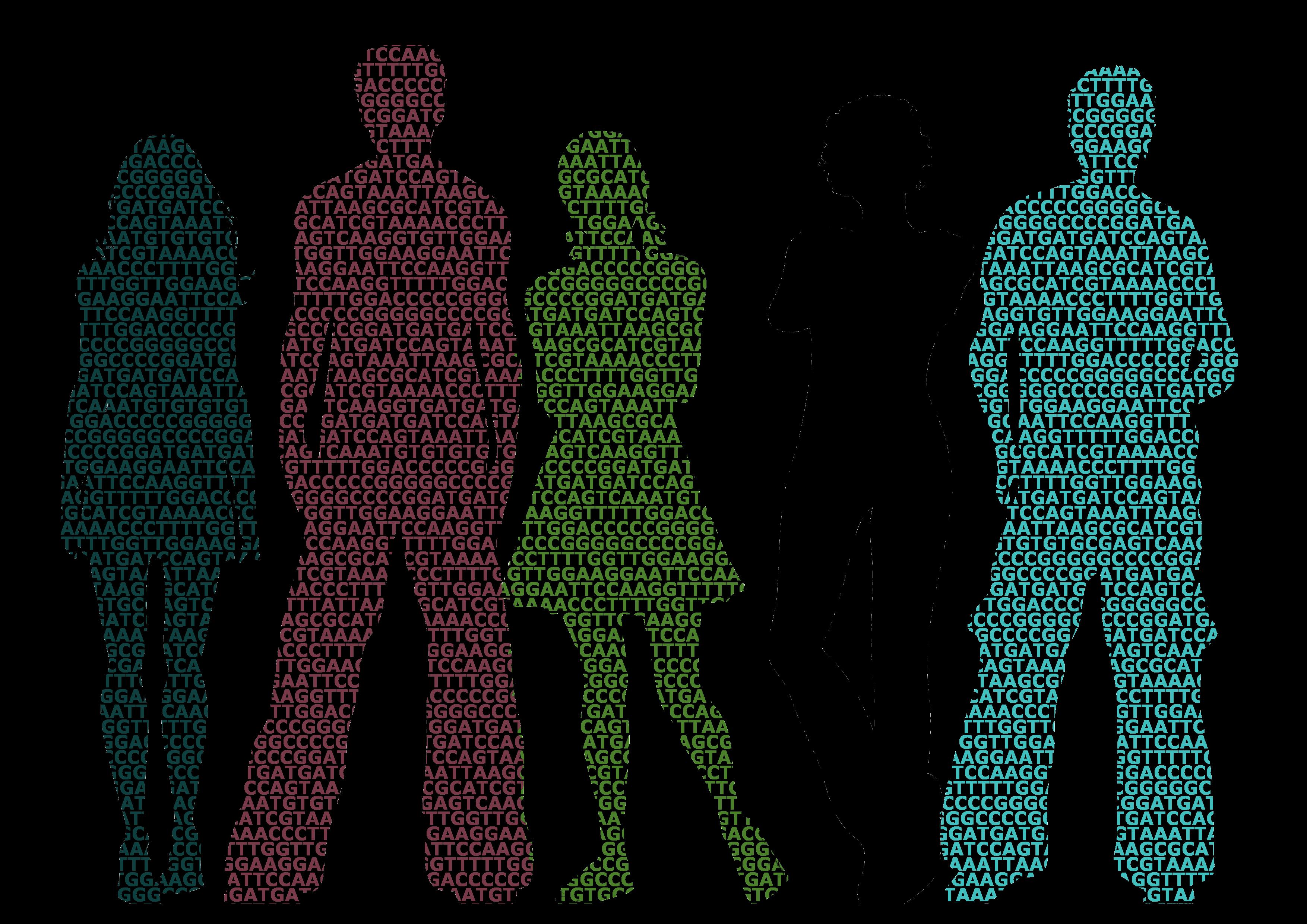 diversidad genética riesgo poligénico