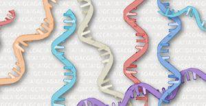 medicina personalizada oncología
