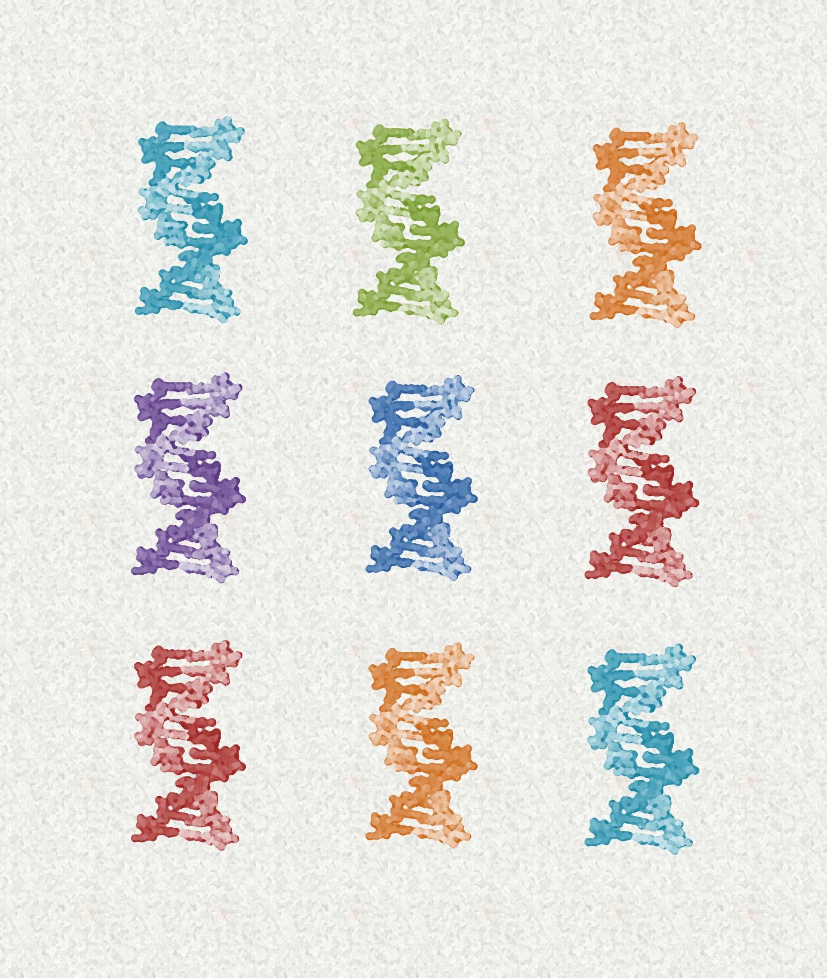 malinterpretación información genética