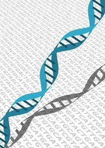 testgeneticos