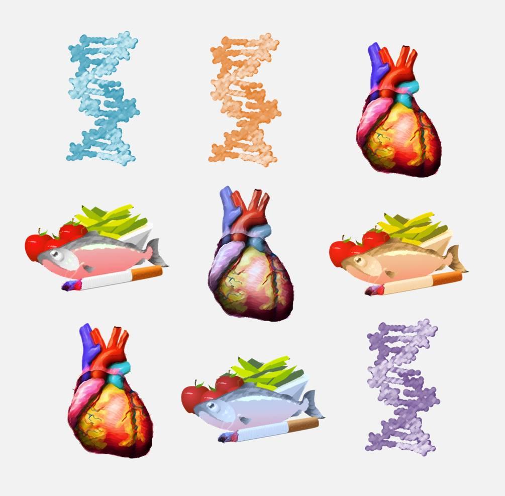 efectos de la hipertensión