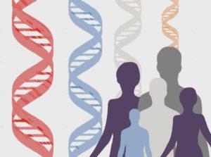 evolución genes inmunitarios