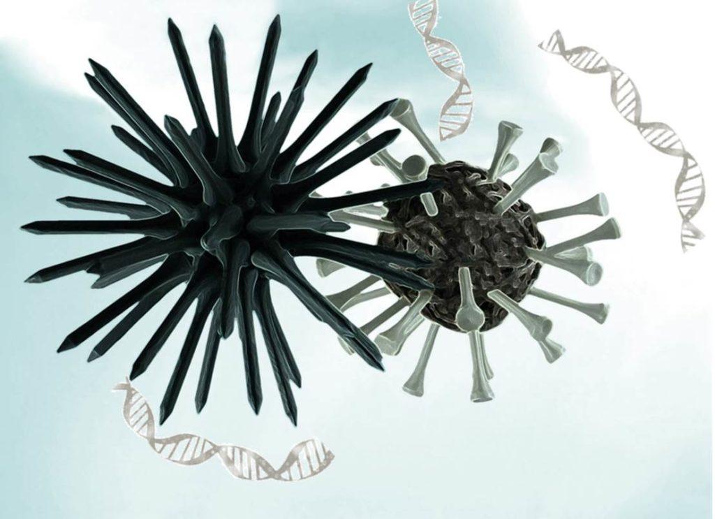 virus de epstein barr enfermedades
