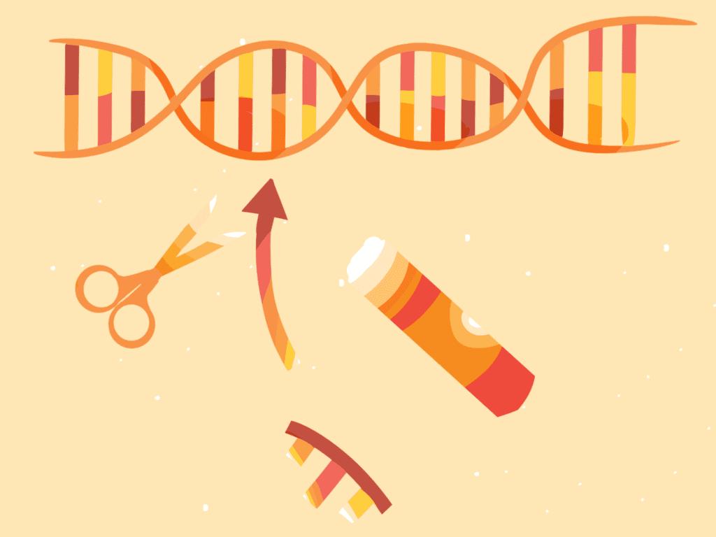 terapia génica, edición del genoma