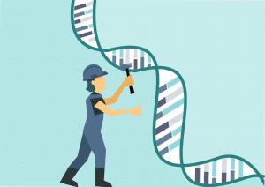 CRISPR in vivo