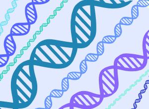 paneles de genes