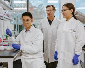 regulación terapia génica