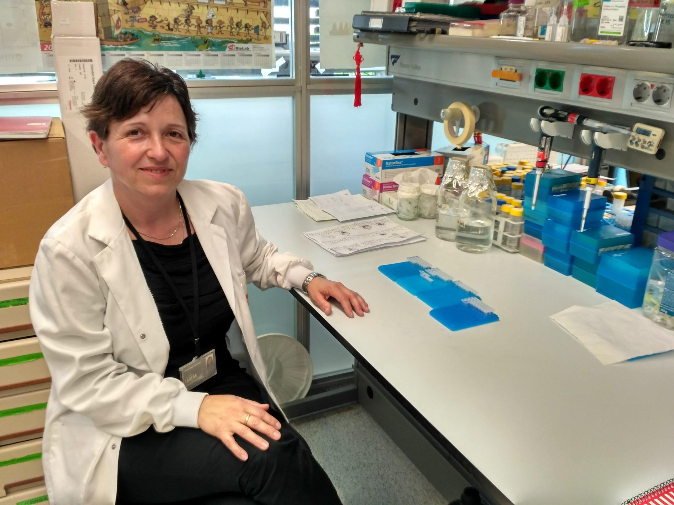 Anna Bigas, nueva directora científica del CIBER de Cáncer -