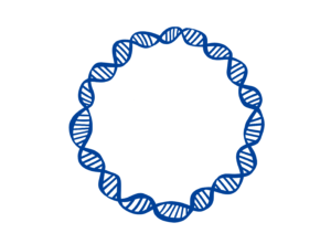 ARN circular esquizofrenia