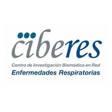 ciberes